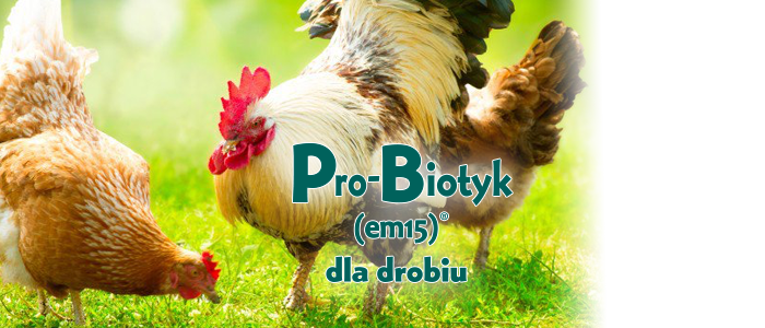 Pro-Biotyk(em15)® for Poultry